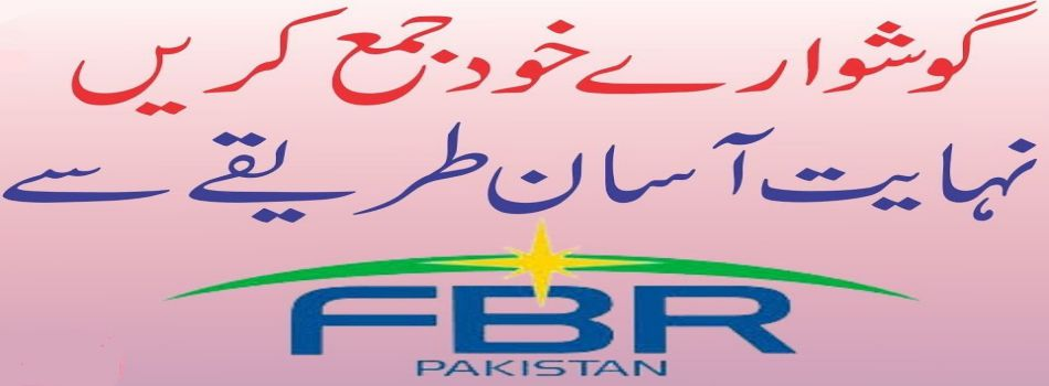 Submit Income Tax Return on FBR iris for Government & Private Employees urdu
